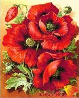 "Diamond painting ""Bright poppies"" - 30 x 38cm"