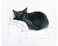 Among black cats V - embroidery kit /RTO/ 27 x 23.5 cm