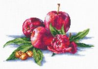 Apples And Hazelnut - embroidery kit /Andriana/ 26 x 18 cm